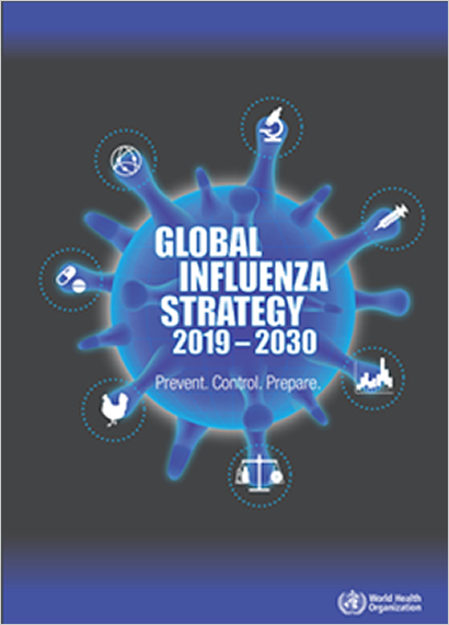 Overview of the Global Influenza Strategy 2019-2030
